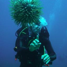 Koh Phangan Dive Sites