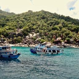 Diving in Koh Samui